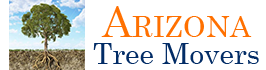 Logo, Arizona Tree Movers - Tree Moving Company